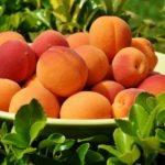 calories in apricot