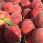 calories in peach