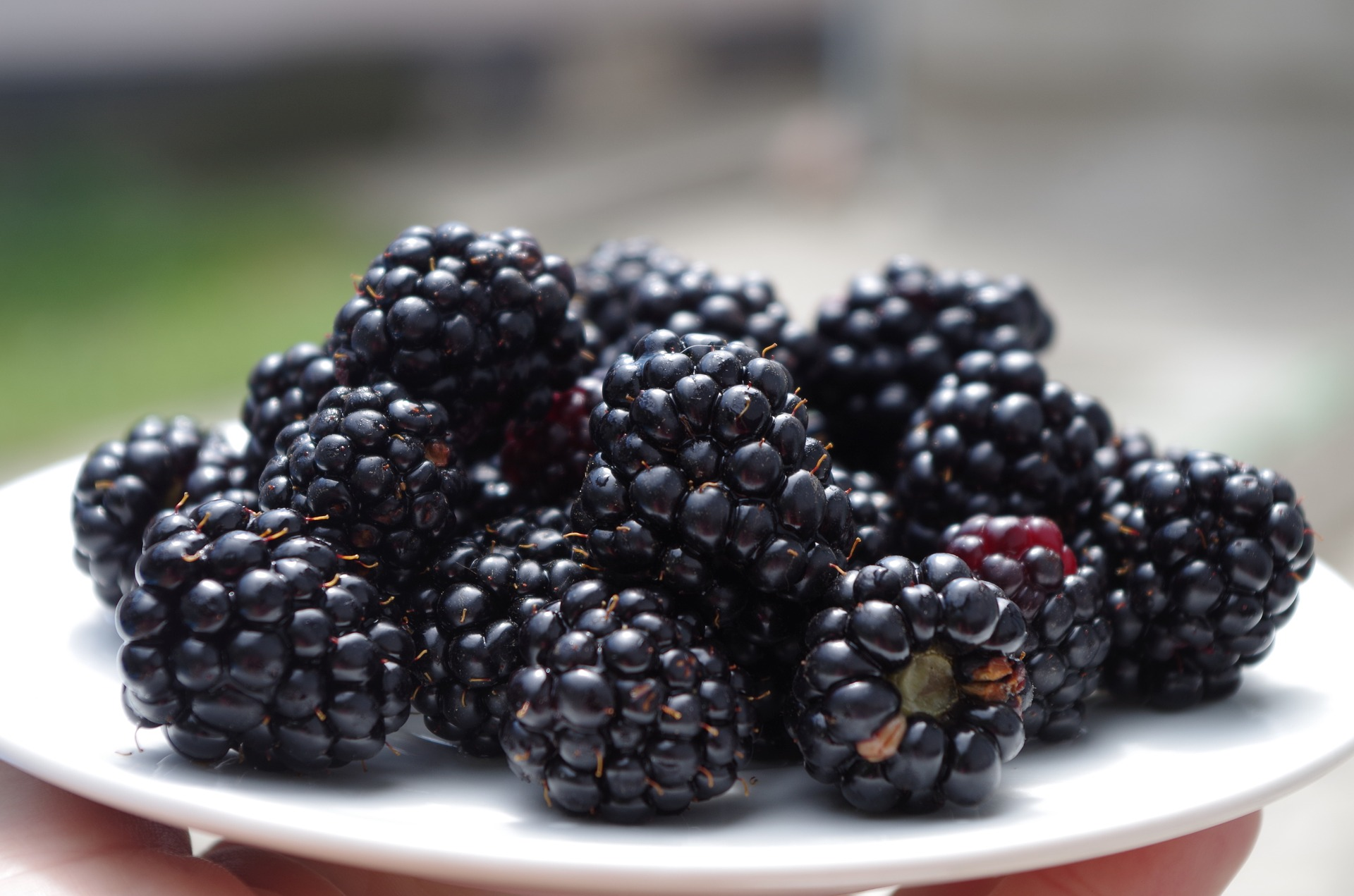 Basic Calories In Blackberries