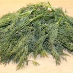 calories in dill
