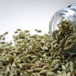 calories in fennel seeds