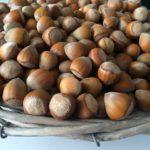 calories in hazelnuts