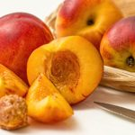 calories in nectarine
