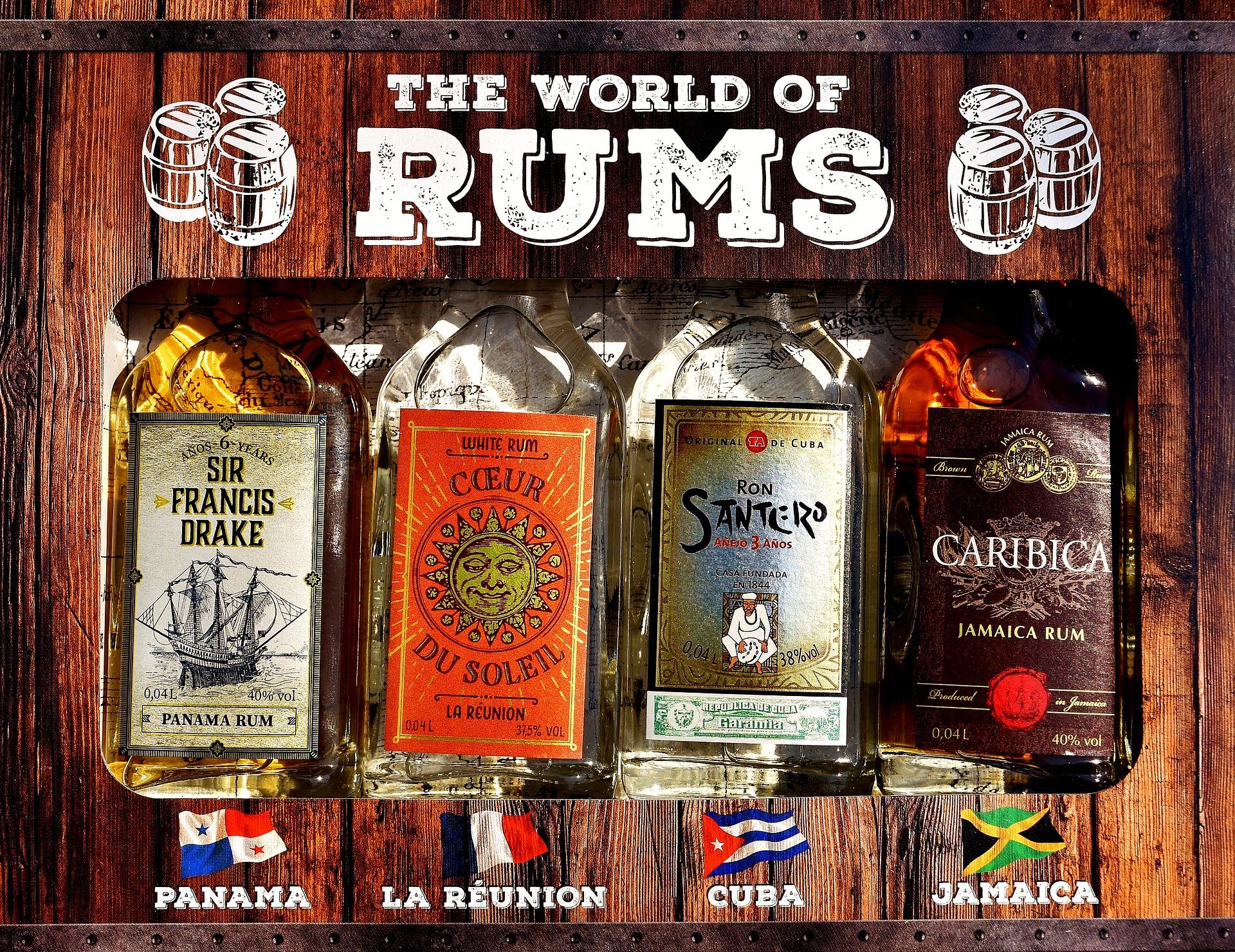 🥃 [Basic] Calories in Rum