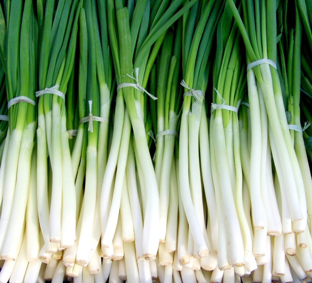 Basic Calories In Spring Onion