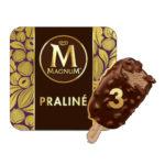 Calories in Magnum Praliné Ice Cream Stick